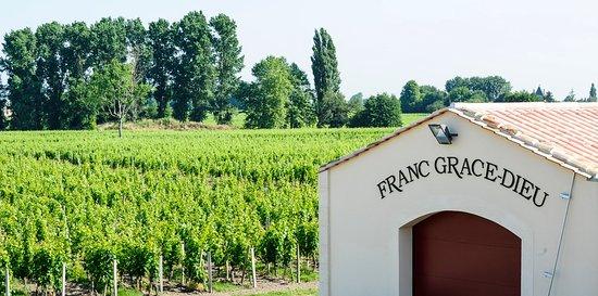 Château Franc Grâce-Dieu : Extérieur