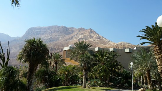 Kibbutz Ein Gedi : View From The Trail of The Judean Desert