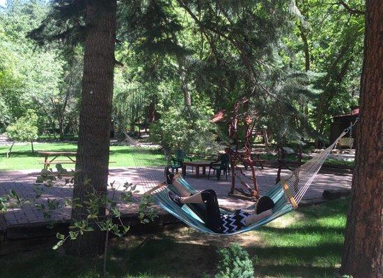 The Butterfly Garden Inn: photo1.jpg