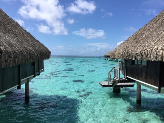 Surreal picture of hilton moorea lagoon resort spa for Surreal salon 8