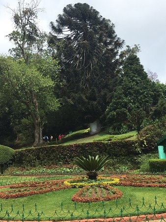 Coonoor, India: Great place to observe nature's bountiful colours and enjoy a boat ride!