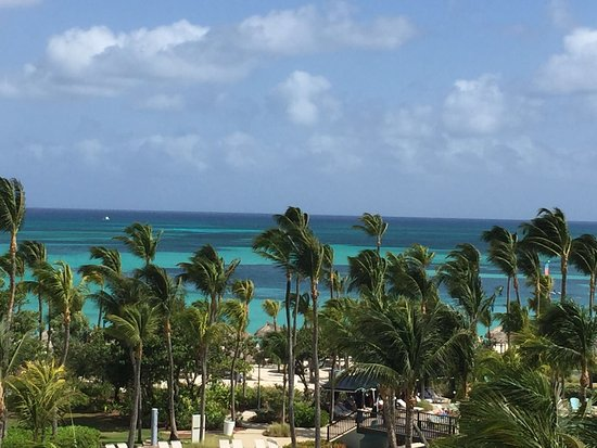 Hilton Aruba Palm Beach Club Reviews