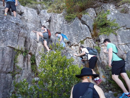 Hike Table Mountain: Some scrambling with help.