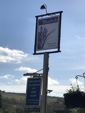 Cocking, UK: The Bluebell