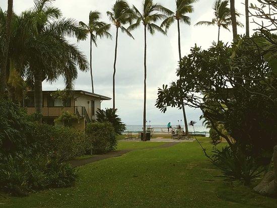 Maui Sands 사진