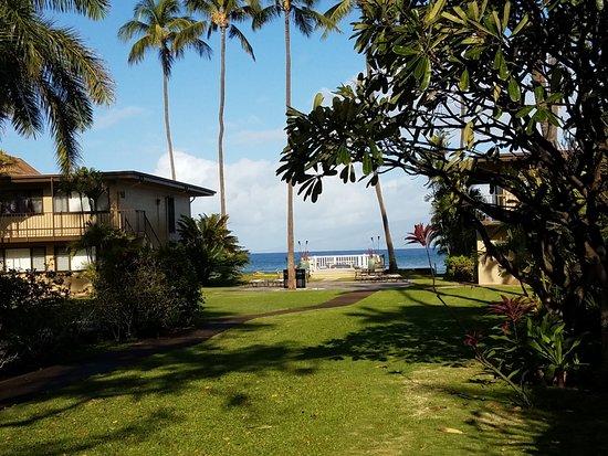 Zdjęcie Maui Sands