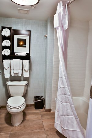 Homewood Suites by Hilton Asheville- Tunnel Road: Guest Bathroom