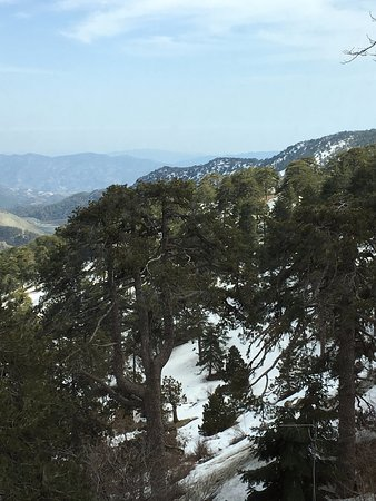 Troodos, Cyprus: View from the cafe