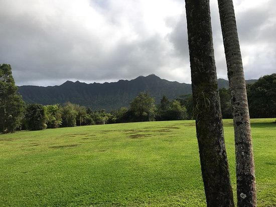 Kilauea, Hawái: Just one of the beautiful views from the ride