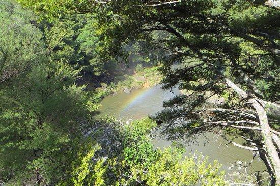 Rainbow Falls Walk: photo1.jpg