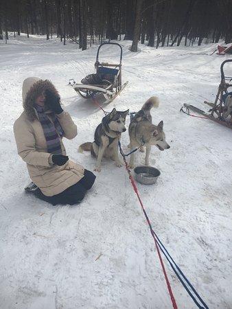 Winterdance Dogsled Tours: photo6.jpg