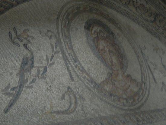 Pulborough, UK: Venus mosaic