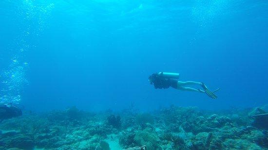 Scubafun: Gliding over Penon Reef