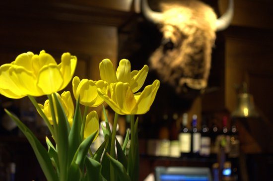 Mayville, NY: Spring flowers at the bar