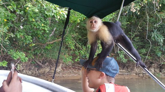 Panama Day Trips- Canal Eco Tours