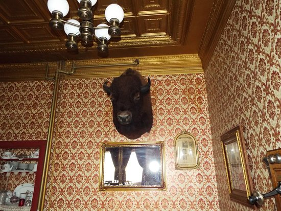 Virginian Hotel: buffalo head in dining room