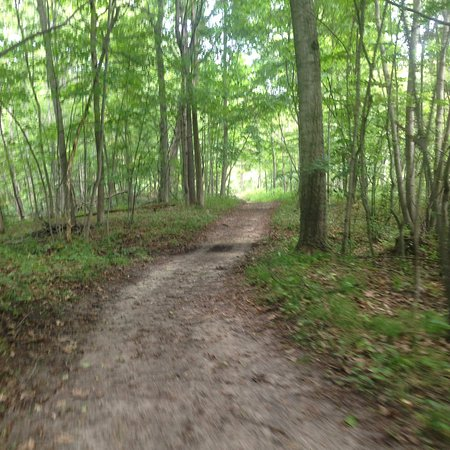 Hastings, MI: hiking trails