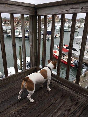 Inn at Camachee Harbor: photo1.jpg