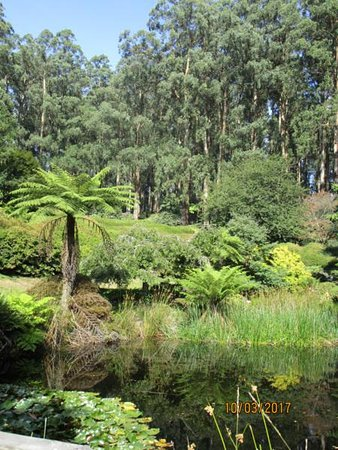 National Rhododendron Gardens: Beautiful scenery