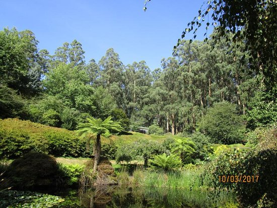 National Rhododendron Gardens: View along the way