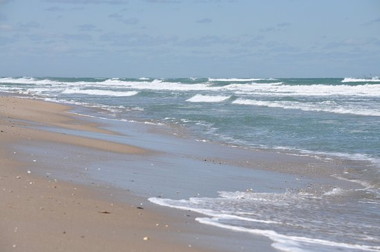 Canaveral National Seashore: wide open beaches