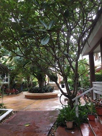 Kui Buri, Таиланд: photo8.jpg