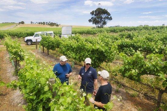 Marananga, Australia: Taste Two Hands' Single Vineyard Series wines amongst the vines
