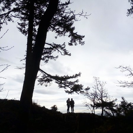Nanoose Bay, Canada: Excelente passeio