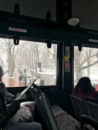Old Town Trolley Tours: Great tour of city. Ended up doing most of the loop because it snowed ALL DAY. Had tour guide Bu