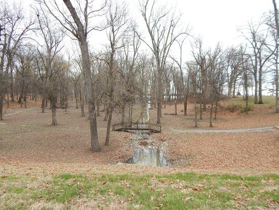 Fort Massac State Park: wood path