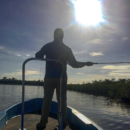 Punta Gorda, Belize: I think Yogi said Permit