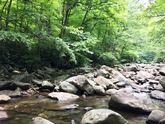 Chimneys Picnic Area: 空気も水も綺麗