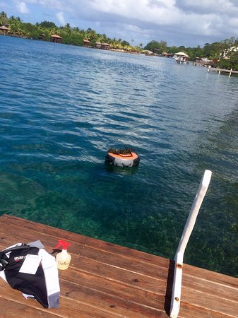 Sandy Bay, Honduras: You can dive right in off the end of our dock!