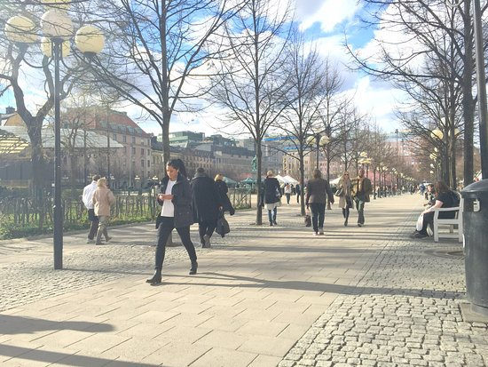 Photo of Park Kungsträdgården at Kungsträdgården, Stockholm 103 21, Sweden