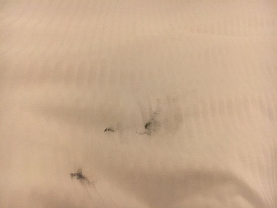 The Westin Dallas Park Central: Big black marks on the comforter when we arrived. Looks like grease or something.
