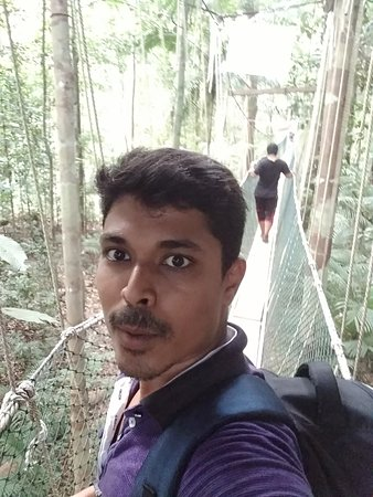 Taman Negara National Park, Malaysia: IMG_20170316_100023_large.jpg
