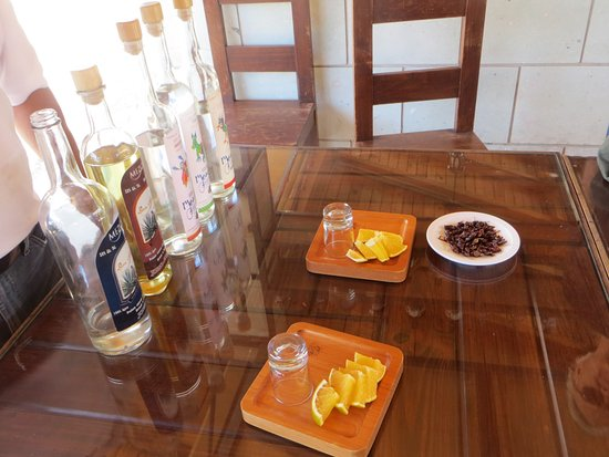 Oaxaca, Meksiko: Mezcal tasting on one of my excursions