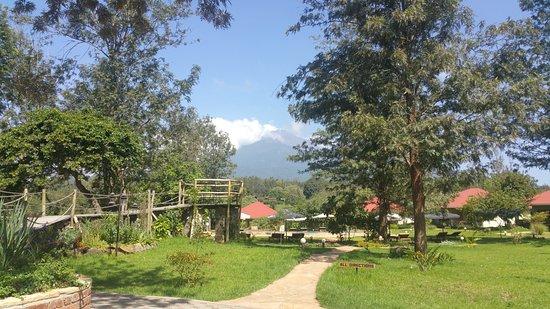 Usa, Tansania: Aussicht vom Frühstücksbereich, im Hintergrund sind die Zimmer/Bungalows zu sehen