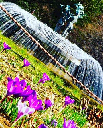 Showa Kinen Park: 国営昭和記念公園