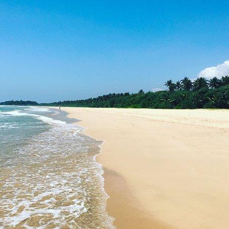 Centara Ceysands Resort & Spa Sri Lanka - Picture of Centara