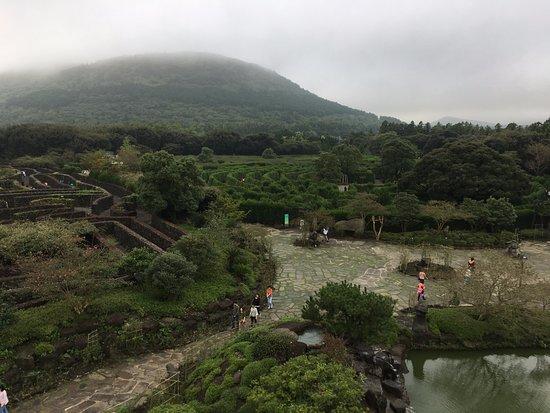 제주김녕미로공원 사진