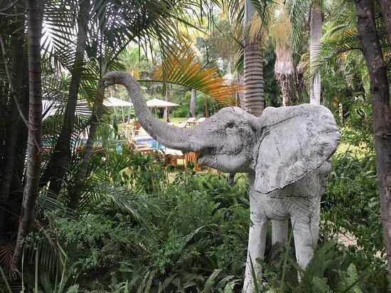 Aha Sefapane Lodge and Safaris: photo3.jpg