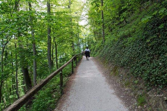 Castle of Hohenzollern : Trek towards the castle