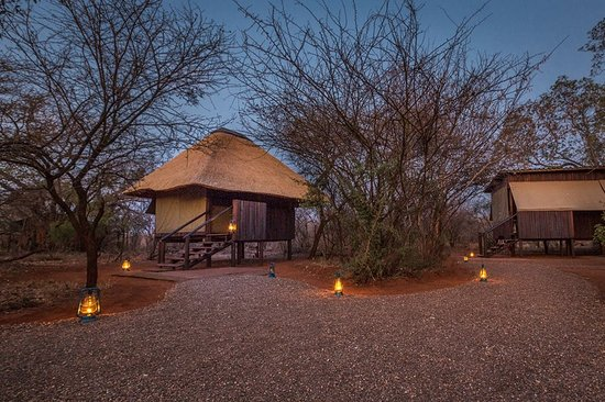 Mosetlha Bush Camp & Eco Lodge: Photo by Thomas Frommel