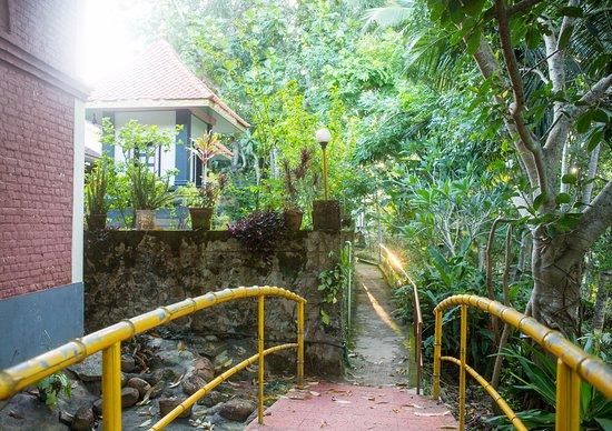 Sivananda Yoga Vedanta Dhanwantari Ashram: Pathway alongside the temple