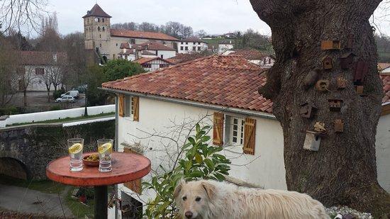 Espelette, France : point de vue sous le chêne