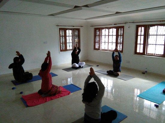 Himalayan Yoga & Reiki Centre