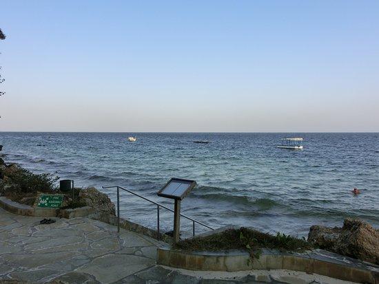 Снимок Severin Sea Lodge