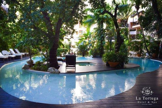 La Tortuga Hotel Spa Photo