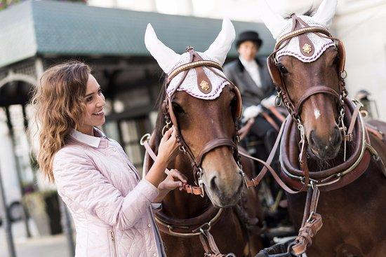 Grand Hotel Kronenhof: Kronenhof Horse Carriage 3